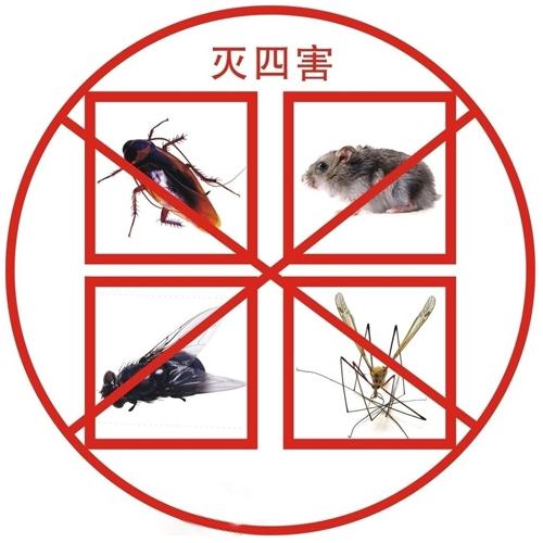 中山除四害承担起帮助人们解决蟑螂虫害问题的企业