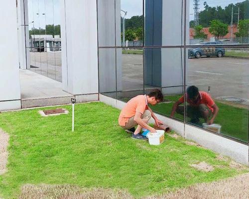 中山白蚁防治现代建筑内的白蚁危害原因
